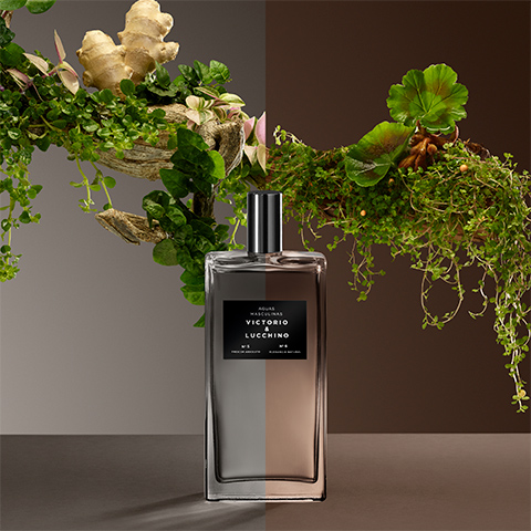 alt.perfume-intesifica-frescor-absoluto
